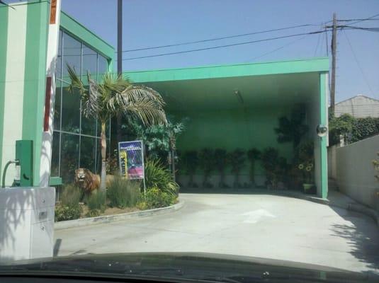 Car Wash Near Green Hills