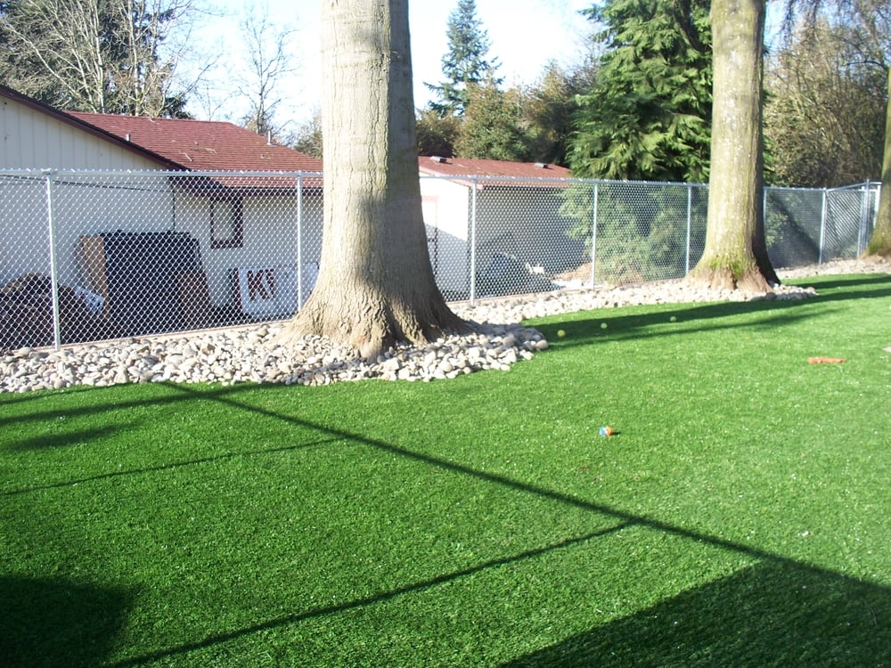 Dog Play Area In Backyard : Large outdoor play area  Yelp