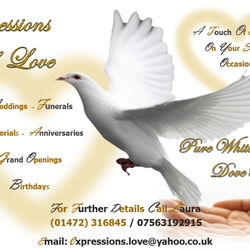 Expressions Of Doves, Grimsby, North East Lincolnshire