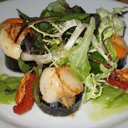 Scallops on black pudding