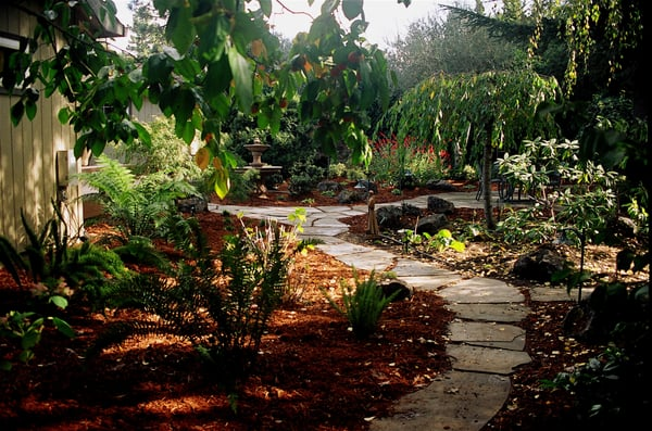 A low maintenance shade garden in a park like setting for Low maintenance shade garden
