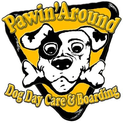 Find Dog Day Care Near Me