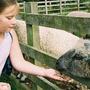 Newham Grange Leisure Farm