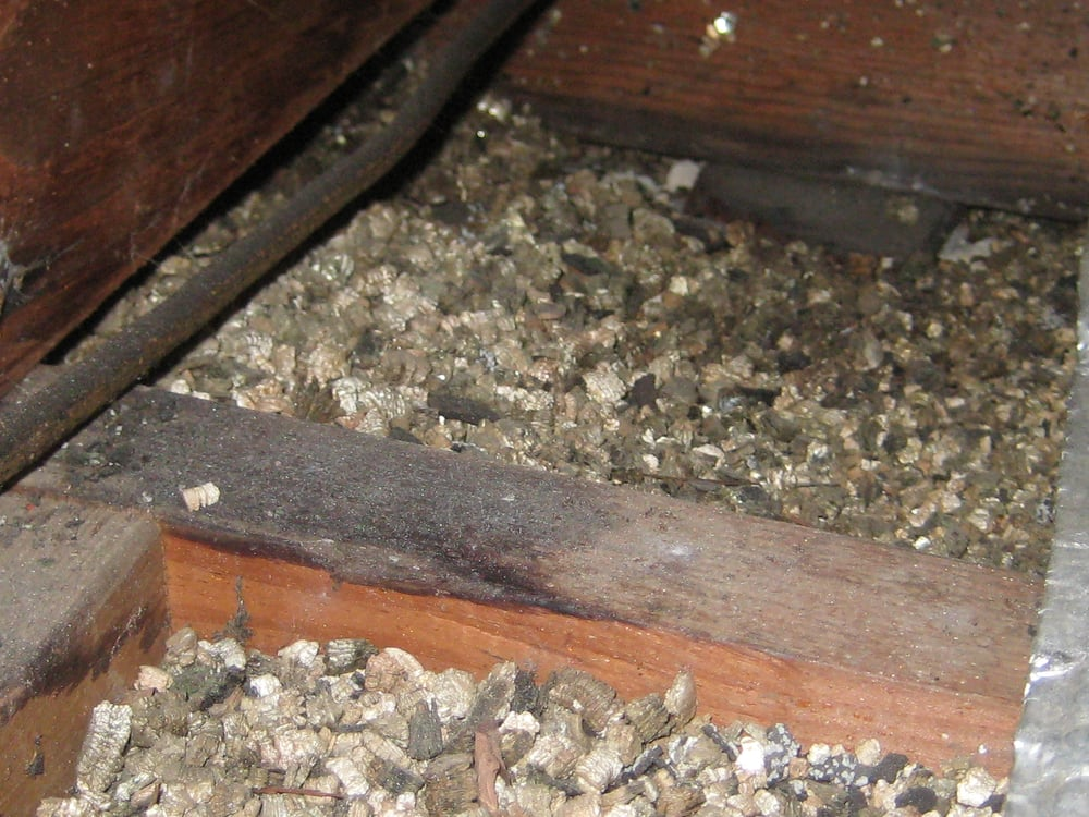 Asbestos Containing Vermiculite Insulation Yelp