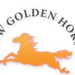 New Golden Horse Car Service New York