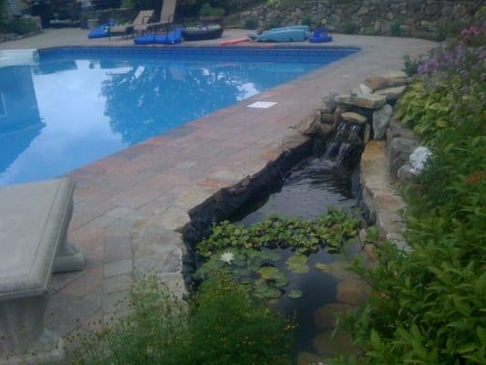 Pool area pavers coping fieldstone walls koi pond for Koi pond next to pool