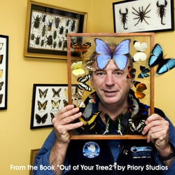 Pat Falvey from the book Out of Your Tree 2 by Priory Studios, Dublin, for The Irish Cancer Society