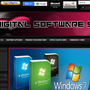 The Digital Software Store