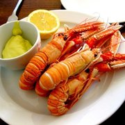 Langoustines & mayonnaise @ St John Bread & Wine (Spitalfields, London)