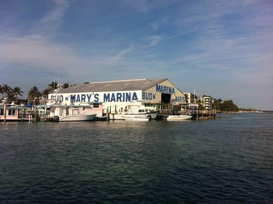 Bud n mary s fishing marina islamorada fl united for Bud n mary s fishing report