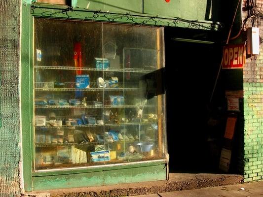 Liem S Aquarium Bird Shop Closed Pet Stores