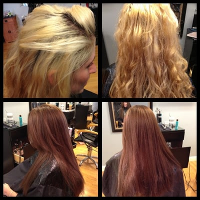 tint back the client went from bleached damaged hair to a