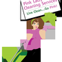 Pink Ladies Residential Cleaning