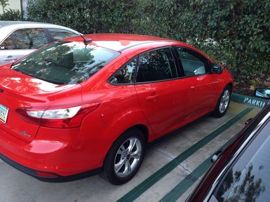 Firefly Lax Car Rental Reviews