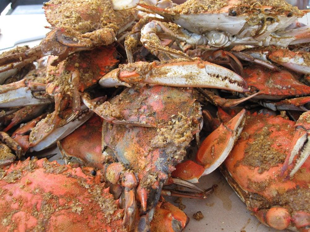 Crab Cakes Baltimore Yelp