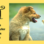 ACT Spay & Neuter Clinic