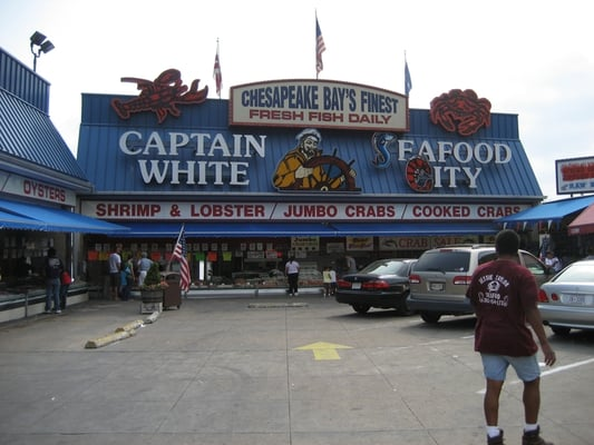 for Washington dc fish market