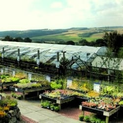 Tyne Valley Nurseries, Stocksfield, Northumberland