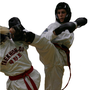 Oxfordshire Taekwon-do Wantage and Grove