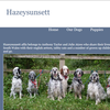 English Setters website. Based in Cwmbran.