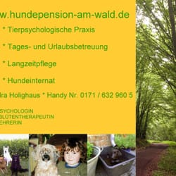 Hundepension am Wald, Laubach, Hessen