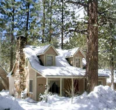sleepy forest cottages vakantieverhuurbemiddelaars