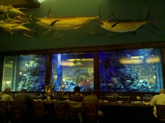 Islamorada fish company ashland va verenigde staten yelp for Islamorada fish company menu