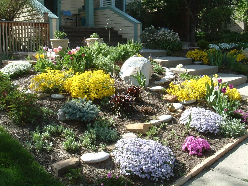 Xeriscape slope solution yelp for Xeriscape garden designs