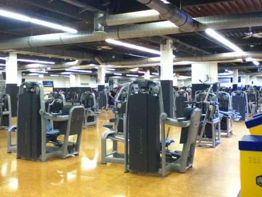 McFIT - Gyms - Wandsbek - Hamburg, Germany - Reviews ...